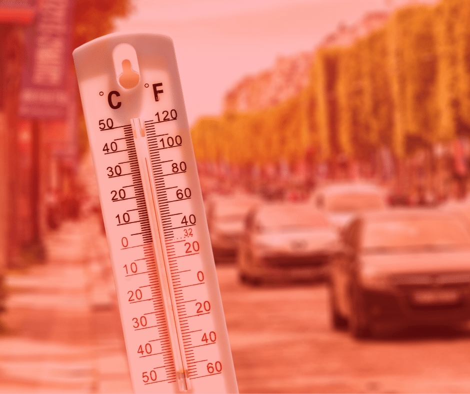 Tips for driving in a heatwave